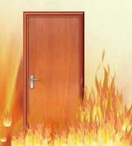 4.-sơn-chống-cháy-sondinhngan.com_