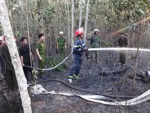 Cháy rừng trồng của người dân tại huyện Bình Sơn